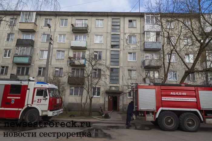 В Сестрорецке при пожаре в доме 310 по Приморскому шоссе погиб человек