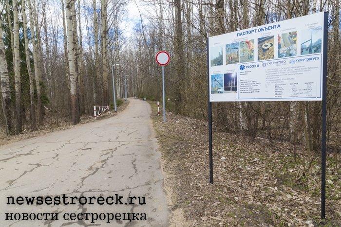 Компания «Ленэнерго» осветила дорогу к Шалашу Ленина